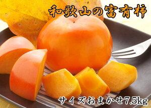 【ふるさと納税】[甘柿の王様]和歌山産富有柿約7.5kgサイズおまかせ※11月頃〜12月中旬頃に順次発送予定