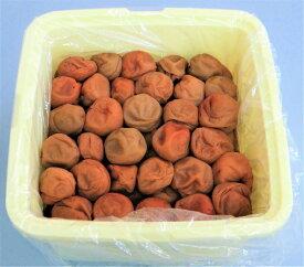 【ふるさと納税】わけあり紀州南高梅はちみつ漬梅干2.6kg