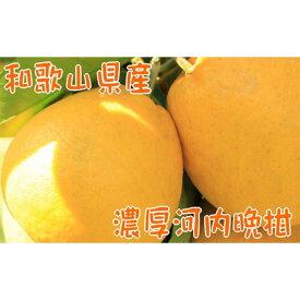 【ふるさと納税】【2022年4月発送】【農家直送】【爽快柑橘】爽やか河内晩柑(ご家庭用)3.5kg