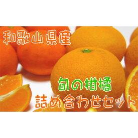 【ふるさと納税】【北海道・沖縄配送不可】【農家直送】旬の濃厚柑橘詰め合わせセット(ご家庭用)3kg