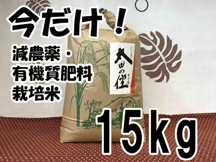 【ふるさと納税】【期間限定】平成29年度産 減農薬・有機質肥料栽培 太田のちから 15kg
