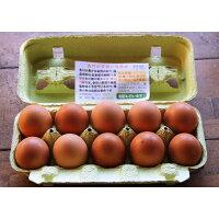 【ふるさと納税】国産飼料にこだわった鶏が産む安全安心のレモン色たまご10個×6