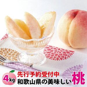 【ふるさと納税】※先行予約受付 和歌山県産の美味しい桃 約4kg (10〜15玉入り)【2021年6月中旬頃から順次発送予定】品種お任せ 桃 モモ もも 果物 おすすめ オススメ お勧め ギフト 贈答 の