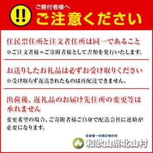 【ふるさと納税】紀州南高梅梅エキス(練)55g【2個セット】