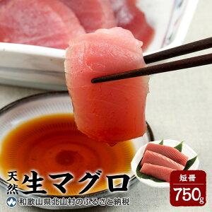 【ふるさと納税】生マグロ <冷蔵> 短冊 750g【数量限定/予約受付】