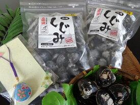 【ふるさと納税】東郷湖冷凍しじみ(大粒)1kg(しじみストラップ1個付)