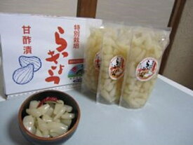 【ふるさと納税】A21-20 特別栽培らっきょうの甘酢漬