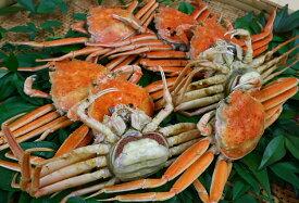 【ふるさと納税】046 鳥取県産 ボイル親がに かに カニ 蟹 せこがに セコガニ ゆで 海産物 シーフード