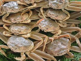 【ふるさと納税】045 鳥取県産 生親がに かに カニ 蟹 せこがに セコガニ 海産物 シーフード