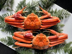【ふるさと納税】053 鳥取賀露港 タグ付き浜茹で松葉がに かに カニ 蟹 ボイル
