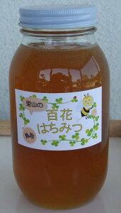 【ふるさと納税】159 里山の百花蜂蜜 はちみつ ハチミツ 国産 送料無料