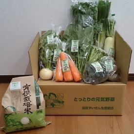 【ふるさと納税】078 有機JAS認定 冬野菜とお米の詰め合わせセット