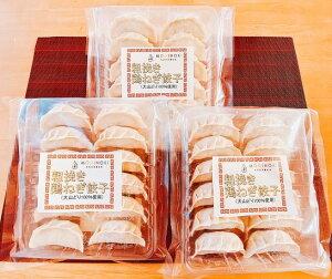 【ふるさと納税】粗挽き鶏ねぎ餃子(大山どり100%使用)