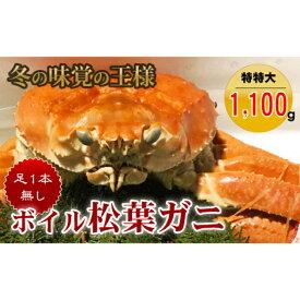 【ふるさと納税】【魚倉】足1本なしボイル松葉ガニ(特特大1,100g以上)