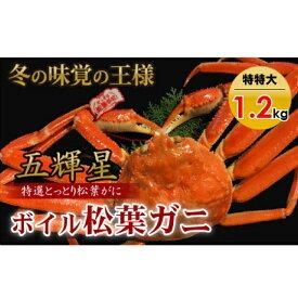【ふるさと納税】【魚倉】五輝星ボイル松葉ガニ(特特大1.2kg) 数量限定品