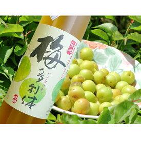 【ふるさと納税】梅酒【梅多利体・バイタリティー】淡麗タイプ
