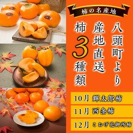 【ふるさと納税】八頭の柿スペシャルコース