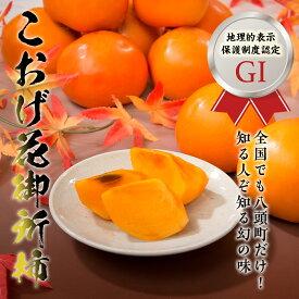 【ふるさと納税】こおげ花御所柿(5kg箱)