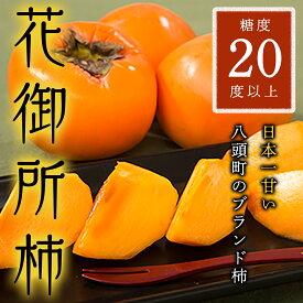 【ふるさと納税】八頭町特産 花御所柿