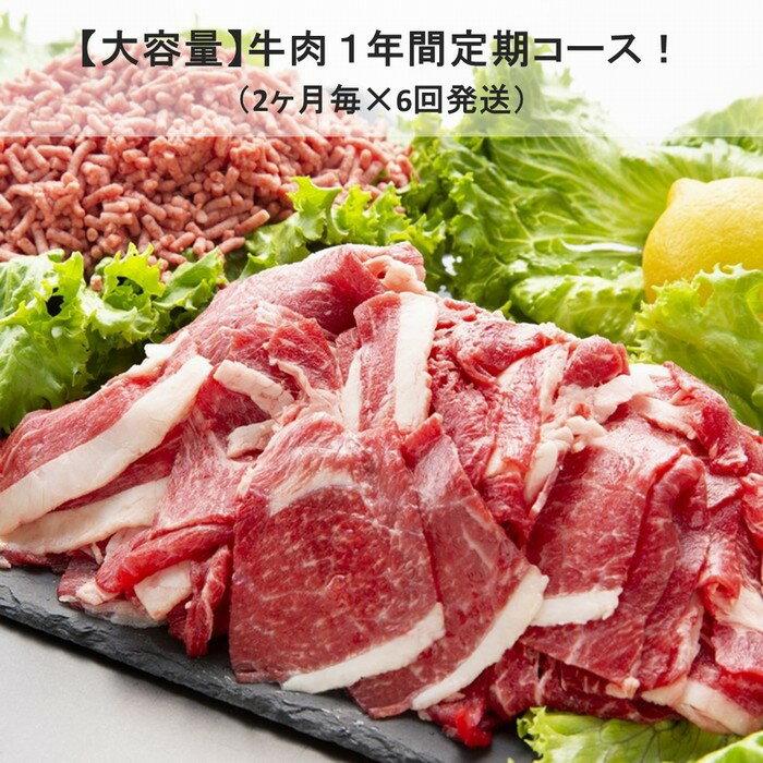 【ふるさと納税】Y084 <乳質日本一!>鳥取県産牛大容量 1年間定期コース(6回発送)