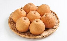 【ふるさと納税】王秋梨 5kg箱 鳥取産