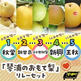 【ふるさと納税】【先行予約】「琴浦のおもて梨」リレーセット