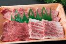 鳥取和牛焼肉用カルビ(大)