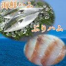 【ふるさと納税】日本海産海鮮ハム「ぶりハム」