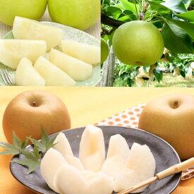 【ふるさと納税】二十世紀梨と旬の赤梨セット 5kg ※8月下旬〜9月発送予定