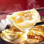 【ふるさと納税】AJ02:大山ルビー豚餃子