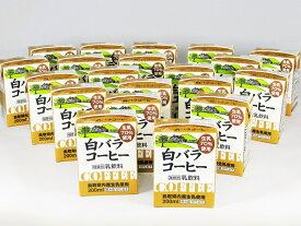 【ふるさと納税】WR-02 鳥取県民みんな大好き!白バラコーヒーブリック(22個入)