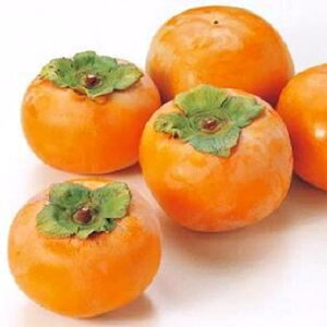 【ふるさと納税】富有柿(6.5kg箱)
