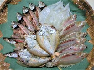 【ふるさと納税】松江うまいもんセットB 魚 開き 一夜干し アジ カレイ イカ ノドグロ カマス 山陰 自然 松江 うまいもん 《20020-16》