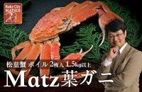 【ふるさと納税】Matz葉ガニ(松葉ガニ)2枚【ボイル・1.5kg以上】《20080-01》