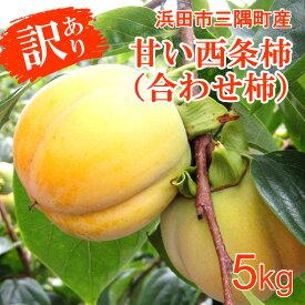 【ふるさと納税】1169.【先行予約】浜田自慢 訳あり甘い西条柿(合わせ柿)5kg