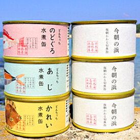 【ふるさと納税】730.のどぐろ・あじ・かれい・旬魚の水煮缶詰め合わせセット【シーライフ】