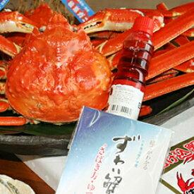 【ふるさと納税】687.活きたままお届け。活け込み本松葉蟹 特大2枚カニ 生食