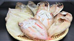 【ふるさと納税】940.山陰浜田 シーライフより5種の魚を手塩に掛けた一夜干し詰め合わせ