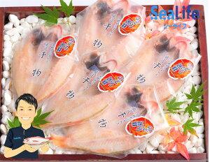 【ふるさと納税】8.のどぐろ 干物 一夜干し 4-5枚 中-大サイズ 約650g 島根・浜田・日本海産 高級魚 無添加