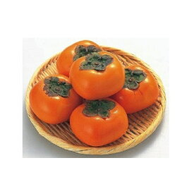 【ふるさと納税】ひらたの柿 富有柿 柿 6.5kg 2LまたはL 24玉~28玉
