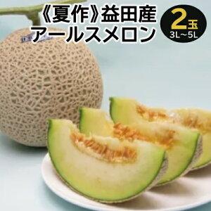 【ふるさと納税】A-168 益田産アールスメロン(2玉入り)【夏作】