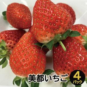 【ふるさと納税】A-536 美都いちご(300g×4パック)
