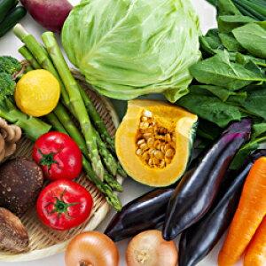 【ふるさと納税】A-198 朝採れ地元 野菜おまかせセット