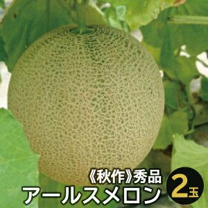 【ふるさと納税】B-14 アールスメロン 秀品 2玉【秋作】