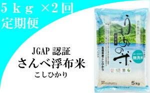 【ふるさと納税】 米 無洗米 定期 コシヒカリ 島根 B212 さんべ浮布米(無洗米)定期便(5kg×2回お届け)