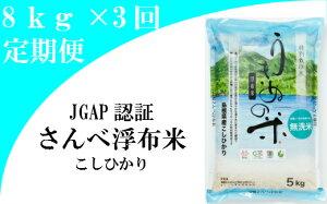 【ふるさと納税】 米 無洗米 定期 コシヒカリ 島根 C045 さんべ浮布米(無洗米)定期便(8kg×3回お届け)