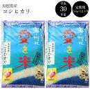 【ふるさと納税】BG無洗米コシヒカリ(5kg×12ヵ月定期便)