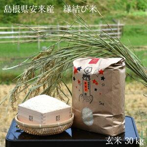 【ふるさと納税】米 ご縁の国 島根の縁結び米 玄米 30kg 令和2年産 新米