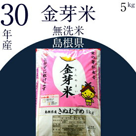 【ふるさと納税】BG無洗米 金芽米 5kg