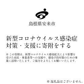 【ふるさと納税】新型コロナウイルス感染症対策・支援に寄附をする(10万円)